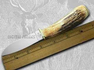 CASE XX Deer Hunter Genuine Stag Pocket Knife Knives