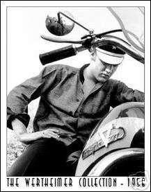 Elvis on Harley motorcycle Wertheimer tin sign