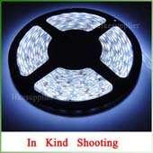 10W Cool White Energy Saving High Power LED Bulb 12V