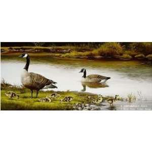Maynard Reece   The Family Canada Geese: Home & Kitchen