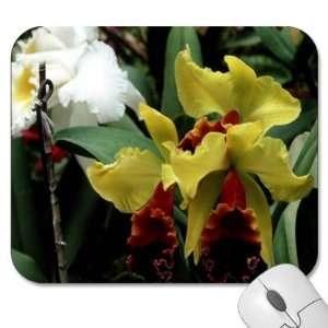 75 Designer Mouse Pads   Flowers/Floral (MPFL 324)
