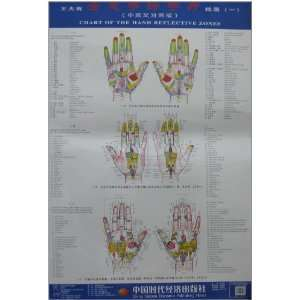 Wang holographic great hand therapy hand clinic charts (1