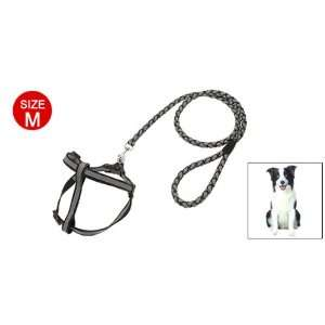 Dog Grey Nylon Pulling Harness Doggie Solid Leash Rope: Pet Supplies