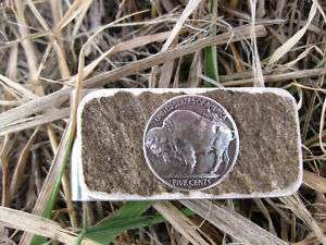 Buffalo Nickel with Antler Shed   Money Clip