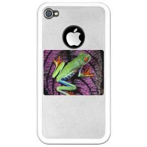 4S Clear Case White Red Eyed Tree Frog on Purple Leaf: Everything Else