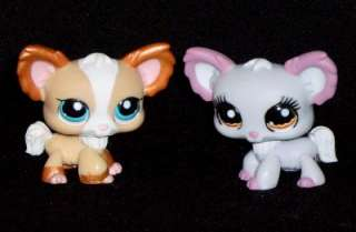 ADORABLE BOY & GIRL CHIHUAHUA PUPS LITTLEST PET SHOP NW
