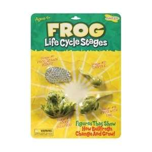 Insect Lore Life Cycle Stages Frog; 3 Items/Order: Kitchen