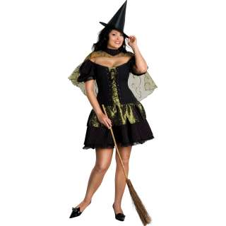 Sexy Wicked Witch Plus Adult Costume   Includes Dress, cape, and hat