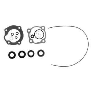 18 2657 Marine Lower Unit Seal Kit for Johnson/Evinrude Outboard Motor