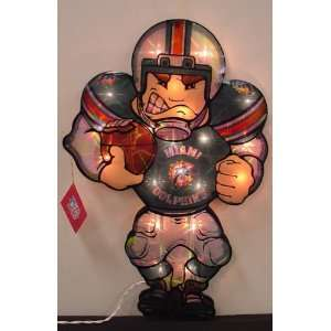 20 NFL Miami Dolphins Lighted Window Football Player