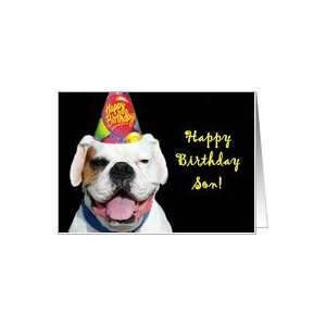 Happy Birthday Son White Boxer Dog Card: Toys & Games